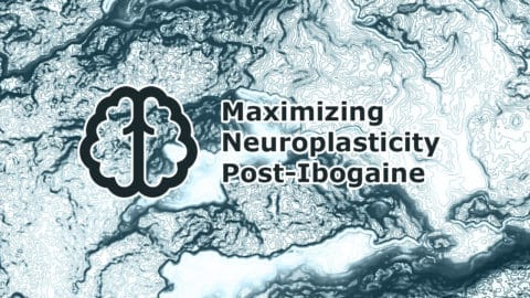 Maximizing Neuroplasticity