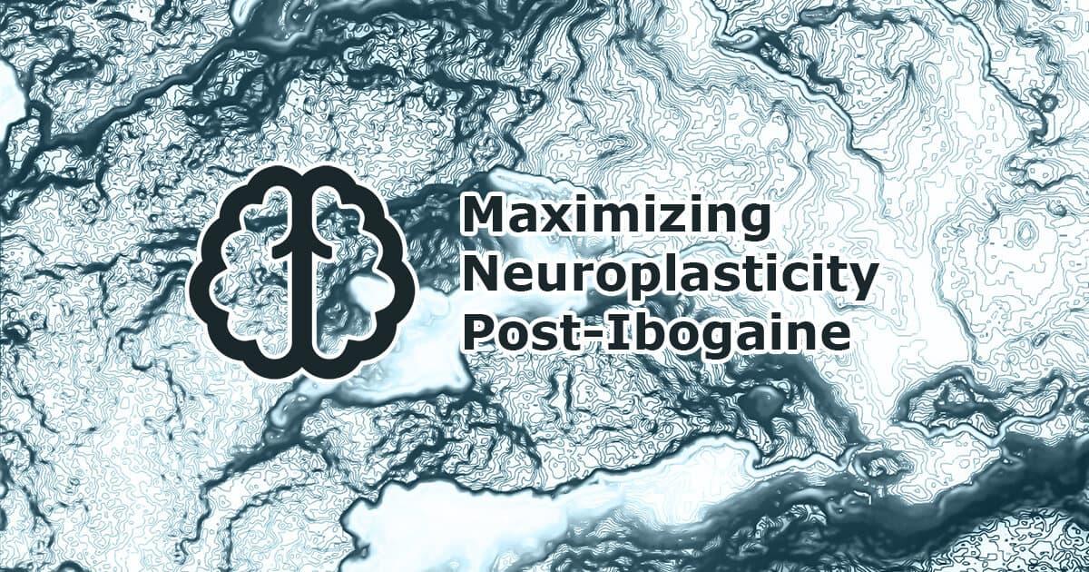 Maximizing Neuroplasticity