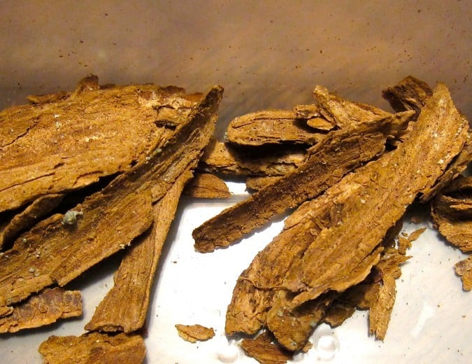 Tabernanthe iboga bark pieces