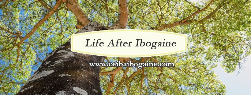 Life After Ibogaine